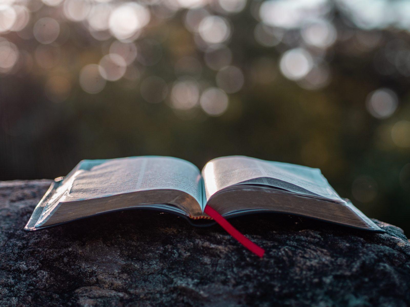 Reflexiones de Esperanza: Enseñanzas en la cueva- 9na Parte