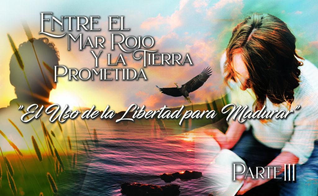 """761 • Entre el Mar Rojo y la Tierra Prometida: """"El uso de la libertad para madurar"""" – Parte III • El Heraldo Institucional del 13 de septiembre del 2020 • Volumen XV • 761"""