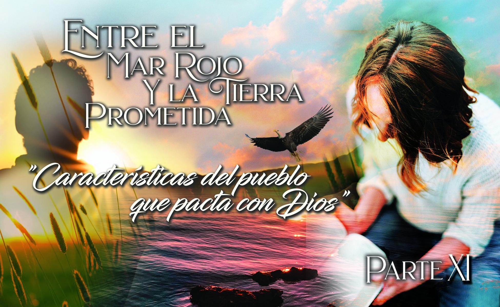 """758 • Entre el Mar Rojo y la Tierra Prometida: """"Características del pueblo que pacta con Dios"""" [Parte XI] • El Heraldo Institucional del 23 de agosto del 2020 • Volumen XV • 758"""