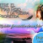 """768 • Entre el Mar Rojo y la Tierra Prometida: """"Moisés formación de un líder"""" [Parte I]V • 1er de noviembre del 2020 • El Heraldo Digital -Institucional • Volumen XV • 768"""