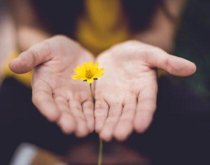 Reflexiones de Esperanza: Las bendiciones garantizadas por la presencia de Dios