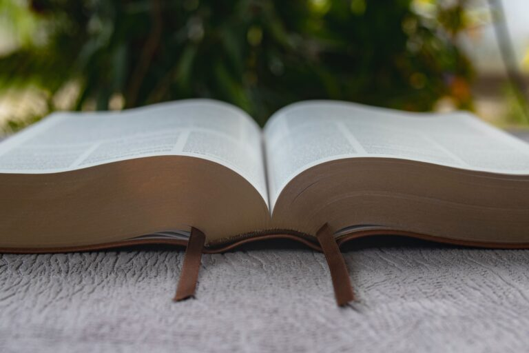 brown book on gray concrete floor